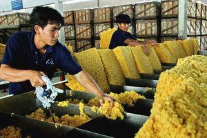 Xuất khẩu cao su sang Trung Quốc sắp cán đích 1 tỷ USD