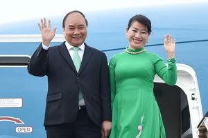 Thủ tướng dự lễ đăng quang của Nhật hoàng Naruhito vào tuần tới