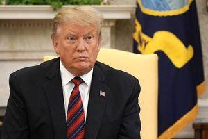 Tổng thống Trump: Áp thuế bổ sung sẽ giải quyết các vấn đề thương mại với EU
