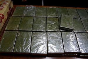 Bắt vụ vận chuyển 42 bánh heroin từ Việt Nam ra nước ngoài