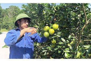 Quảng Ninh tập trung giảm nghèo bền vững
