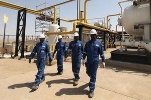 Nga đóng băng hoạt động dầu mỏ ở vùng người Kurdistan gần biên giới Syria
