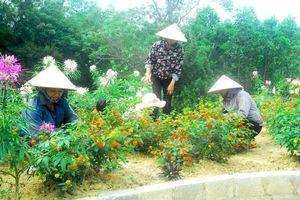 Phụ nữ thực hành tiết kiệm và tham gia xây dựng nông thôn mới