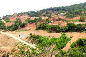 Phải trả lại khu bảo tồn thiên nhiên Sơn Trà