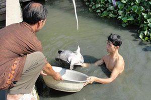Sơn La: 'Thuyền trưởng' của HTX Hương Son giúp thành viên làm giàu