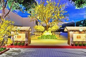 Lễ hội Tết Việt Canh Tý 2020 chuẩn bị tiểu cảnh 4 làng nghề truyền thống