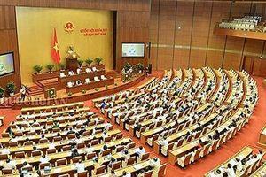 Hôm nay, Khai mạc kỳ họp thứ 8, Quốc hội khóa XIV