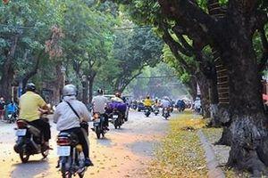 Bắc Bộ hanh khô, Nam Bộ mưa dông ngày đầu tuần