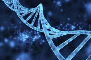 Rất có thể cơ thể bạn đã nhiễm DNA ngoài hành tinh