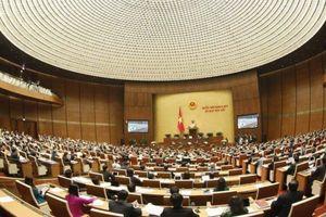 Quốc hội khai mạc kỳ họp thứ 8, xem xét thông qua 12 luật