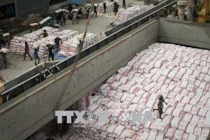 Thái Lan thực hiện chương trình đảm bảo giá gạo