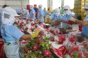 Nâng cao giá trị nông sản trong thương mại hóa sản phẩm