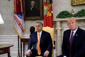 Lộ góc nhìn thật của ông Trump về 'đồng minh' Ukraine