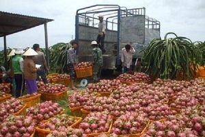 Ùn ứ tại cửa khẩu, nông sản Việt lại tắc đường sang Trung Quốc