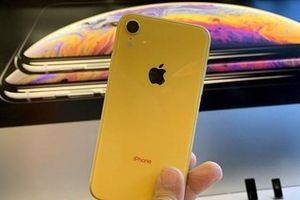 Apple mở bán điện thoại iPhone XR được lắp ráp tại Ấn Độ