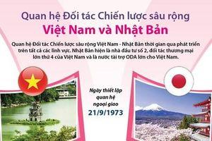 Quan hệ đối tác chiến lược sâu rộng Việt Nam-Nhật Bản