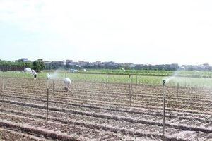Khẳng định vai trò công tác tuyên truyền trong xây dựng nông thôn mới