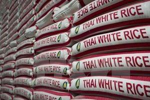 Thái Lan: Xuất khẩu gạo thấp