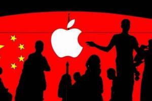 CEO Apple làm Chủ tịch hội đồng cố vấn Đại học Thanh Hoa, Trung Quốc