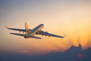 Hãng hàng không Cánh Diều dự kiến bay thương mại vào quý I/2020
