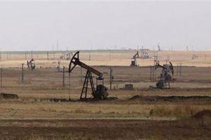 Mỹ ảo tưởng về mỏ dầu Syria?