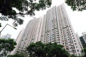 Tài tử Lâm Phong mua căn hộ cao cấp triệu đô chuẩn bị lấy vợ