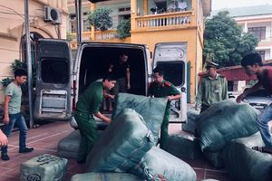 Lạng Sơn: Xử phạt hộ kinh doanh hàng lậu