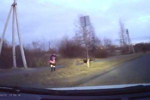 Tài xế ô tô nhanh tay đánh lái cứu bé gái thoát khỏi bầy chó hoang