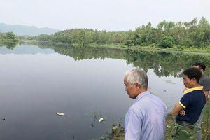 Chưa có biện pháp xử lý triệt để ô nhiễm môi trường ở Công ty Gia Cầm Hòa Phát Phú Thọ