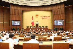 Kỳ họp thứ 8, Quốc hội khóa XIV: Thông cáo báo chí số 5