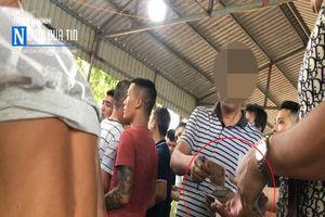 Thâm nhập 'đệ nhất trường gà' tỉnh Thái Bình
