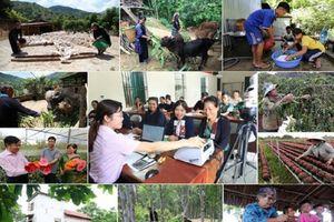 Mạch vốn giảm nghèo bền vững