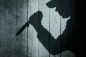 Bắt nữ nghi phạm sát hại chủ nhà lúc rạng sáng