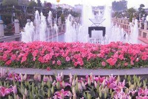 Lâm Đồng: Sẽ xã hội hóa nhiều chương trình của Festival hoa Đà Lạt 2019