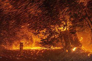 Cháy rừng ở bang California của Mỹ tiếp tục diễn biến nguy hiểm