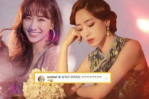 Tái hiện lại bản nhạc thời tiểu học, Eunjung (T-Ara) khiến Hari Won cười… vỡ bụng