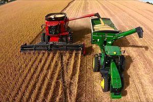 Giá các loại nông sản chủ chốt trong tuần từ 21 - 25/10 đã tăng nhẹ