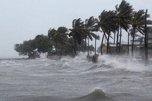 Chủ động ứng phó vùng áp thấp có thể mạnh thành bão
