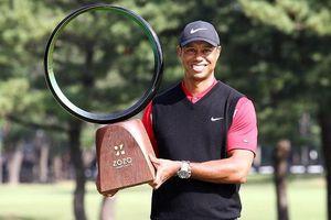 Tiger Woods san bằng kỷ lục tồn tại hơn nửa thế kỷ