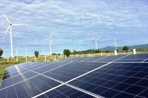 EVN thoái vốn tại Phong điện Thuận Bình, thu về hơn 73 tỷ đồng