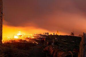 Cháy rừng ở California: Thêm gần 200.000 người cần sơ tán