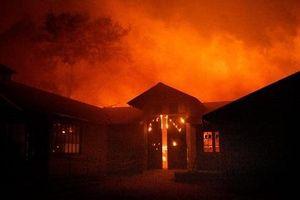 Cháy rừng ở California: Thống đốc bang tuyên bố tình trạng khẩn cấp