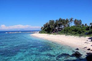 Đảo Lý Sơn sẽ có nhà máy phát điện từ sóng biển