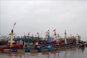 Từ Đà Nẵng đến Bà Rịa-Vũng Tàu cần ứng phó với vùng áp thấp có khả năng thành bão