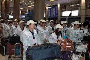 Lao động Việt Nam làm việc bất hợp pháp tại Hàn Quốc giảm