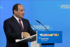 Ai Cập hối thúc tìm giải pháp ngăn chặn bất ổn tại Trung Đông