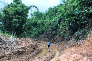 Vụ nước sông Đà bị nhiễm dầu: Suối Trâm giờ ra sao?