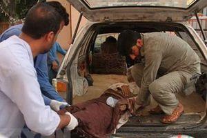 Thủ tướng Pakistan kêu gọi giảm tình trạng bạo lực ở Afghanistan