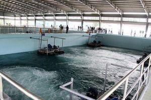 Cần có cơ chế khuyến khích, ưu đãi trong xử lý nước thải sinh hoạt