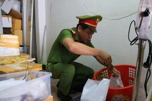 Đà Nẵng: Phát hiện tôm hùm bơm tạp chất tăng trọng